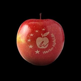 DELIVERY OF - logo fruits with laser